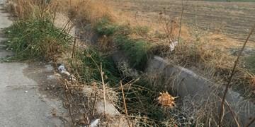 چرام شهری در معرض آلودگیهای زیست محیطی/جوی همان جوی و نی همان نی!+تصاویر