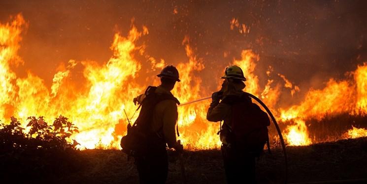 20 هزار هکتار از جنگلهای کالیفرنیا سوختند؛ تصویب بودجه اضطراری برای مهار آتشسوزی