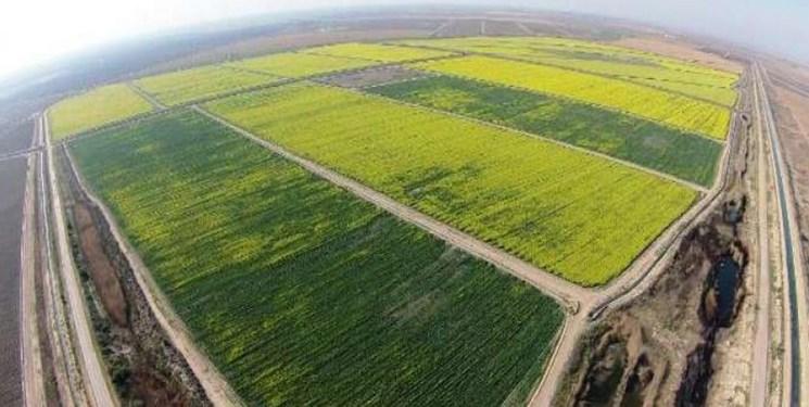 آنچه از طرح عظیم اِحیای اراضی خوزستان باید بدانیم