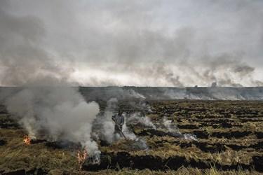 همه پیامدهای آتش زدن کاه و کلش که هر ساله مازندران و ساکنانش به بهای کشت دوم برنج و گندم می پردازند.