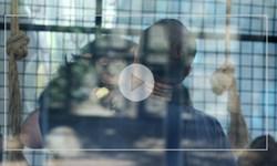 «باران» در قفس بوروکراسی اداری