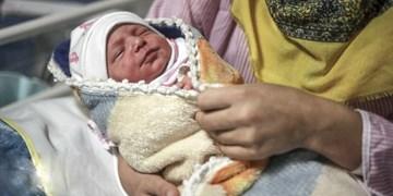 نامگذاری  بیش از 83 هزار نفر به نام «علی» در بوشهر