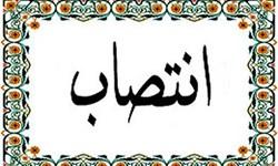 موسوی مدیر کل سیاسی، انتخابات و تقسیمات کشوری استانداری ایلام شد