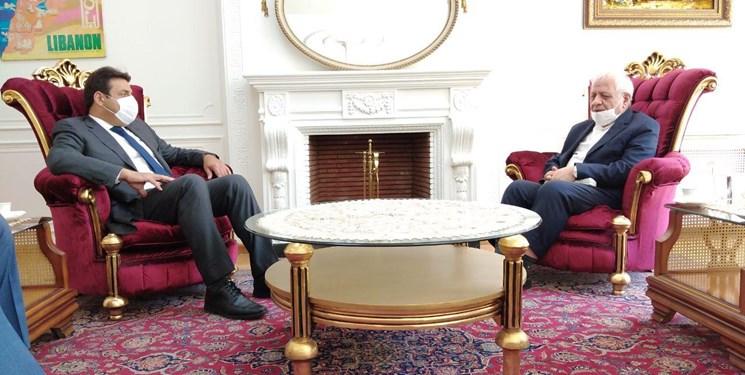 بادامچیان: با یاری دولت، ملت و همه بزرگان لبنان، حادثه بیروت ترمیم و جبران میشود