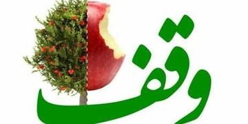 ماموریت جدید سازمان اوقاف و امورخیریه ایجاد اشتغال است/ توزیع 1350 سبد غذایی همزمان با هفته وقف در ایلام