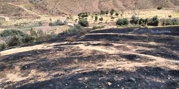 فیلم| آتشسوزی در دماوند؛ گردشگرانی که مراتع یک روستا را خاکستر کردند