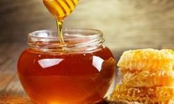 تولید3 هزار و 200 تن عسل و ٧٥ کیلو ژل رویال در مراغه