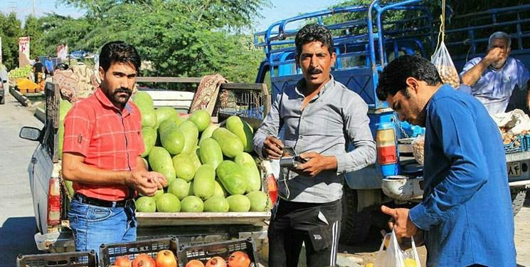 توقیف 193 دستگاه خودروی فروش میوه با مشارکت پلیس راهور در بندرعباس