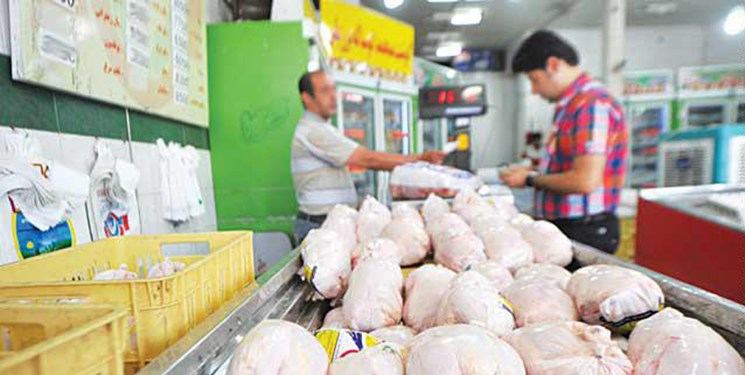 دلایل افزایش قیمت مرغ در هفتههای اخیر/ انحصار، نهاده مرغها را بلعید!