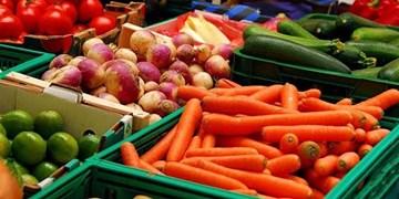 الزام دولت به «خرید محصولات کشاورزی و دامی از شرکتهای ایرانی» در سال آینده