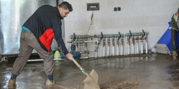 آخرین وضعیت روستاهای سیلزده در خراسانجنوبی | از آغاز بازسازی قناتها تا امداد ۱۸۰ جهادگر