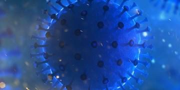 روسیه 80 جهش ویروس  کووید 19 را شناسایی کرد