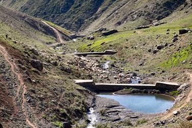 منطقه کوهستانی روستای ناتِر  شهر مرزن آباد/ جمع آوری گوسفندان در کنار رودخانه