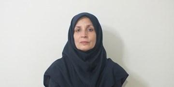 مدیرکل تقسیمات کشوری وزارت کشور: شایعات مرتبط با طرح تفکیک استان فارس کذب است