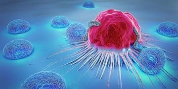 هشدار به زنان: مادهای که ریسک سرطان سینه را افزایش میدهد