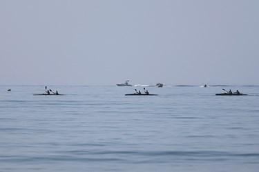شناورهای تندرو نیروی دریایی ارتش در رزمایش ذوالفقار ۹۹
