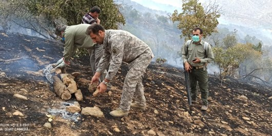 تدابیر منابع طبیعی و محیط زیست برای فصل آتشسوزیها/استفاده از ظرفیت مردم در مواقع بحران