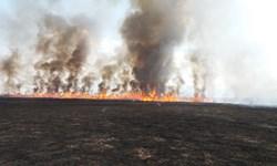 مهار آتش سوزی در تالاب«قره قشلاق» بناب