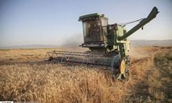 انحصار قیمت گذاری «محصولات  کشاورزی» از دست دولت خارج شد