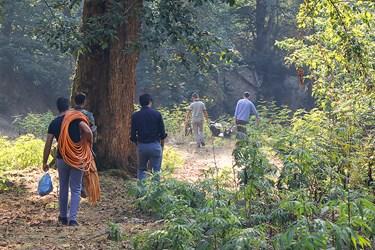 انتقال ادوات محلول سم پاشي به عرصه درختان  شمشاد در منطقه گلندرود رويان