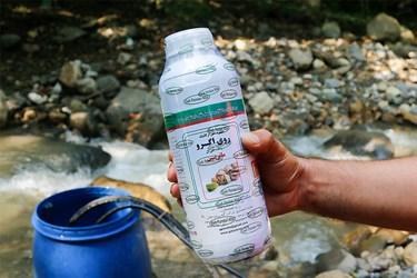 استفاده از محلول ارگانيك براي نجات گونه شمشاد