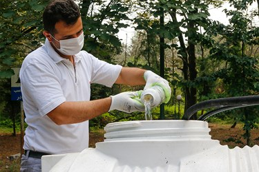 آماده سازی محلول سم پاشی برای درختان شمشاد توسط کارشناس کشاورزی