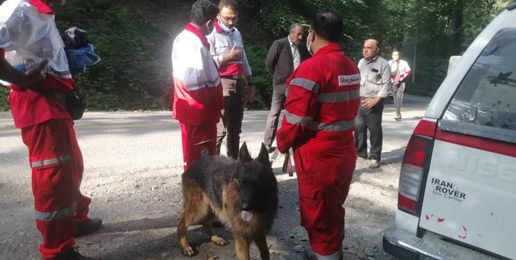 گذشت 24 ساعت از مفقودی جوان 36 ساله در جنگل کردکوی