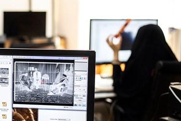 تصویر نگاتیو سیاه و سفیدی که به روش دوبلیکیت  به فایل دیجیتال تبدیل شده.