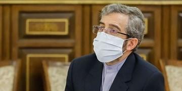 گزارش حقوق بشر سازمان ملل درباره وضعیت حقوق بشر در ایران وجاهت حقوقی ندارد