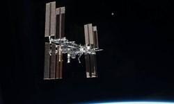 کاشت تربچه در فضا
