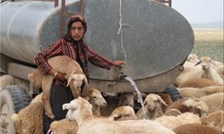 اعزام دو دستگاه تانکر آبرسانی به مناطق عشایری/ ۹۵ درصد عشایر به خوزستان کوچ کردهاند