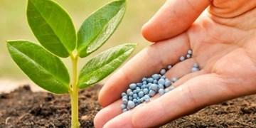 اولویت بندی کودهای یارانهای پس از گرانی 5 برابری/نهاده کشاورز تامین می شود؟