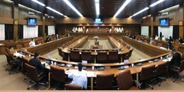 علی نژاد در مجمع عمومی فدراسیون اسکواش: عملکرد مسئولان فدراسیون  قابل تقدیر است