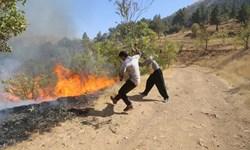 آتشسوزی 10 هکتار از مراتع طبیعی در ایلام