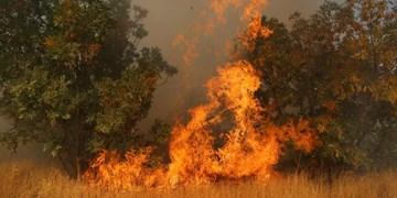 آتش سوزی در ارتفاعات  کوه پهن گچساران بعد از 3 روز همچنان ادامه دارد