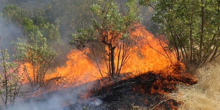 آتش سوزی کوه سیلم چاروسا همچنان ادامه دارد