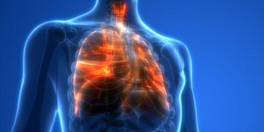 ۷ روش ساده و مؤثر برای پاکسازی ریه/ از سرفه کنترلشده تا کوبههای قفسه سینه