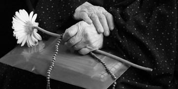 ۴۰۷ سالمند سمنانی؛ دور از کانون گرم خانواده