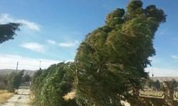 هشدار هواشناسی نسبت به وزش باد شدید و کاهش دما در کرمان