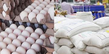 برنج و تخممرغ تنظیم بازار در اردبیل توزیع میشود