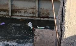 فیلم| صالح شهر محروم از آب شرب سالم