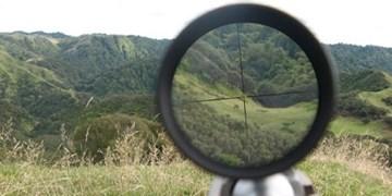 شکارچیان غیرمجاز در طالقان دستگیر شدند/کشف دو قبضه اسلحه «پی سی پی»