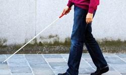 20 درصد از جامعه معلولان ایلام را نابینایان تشکیل میدهند
