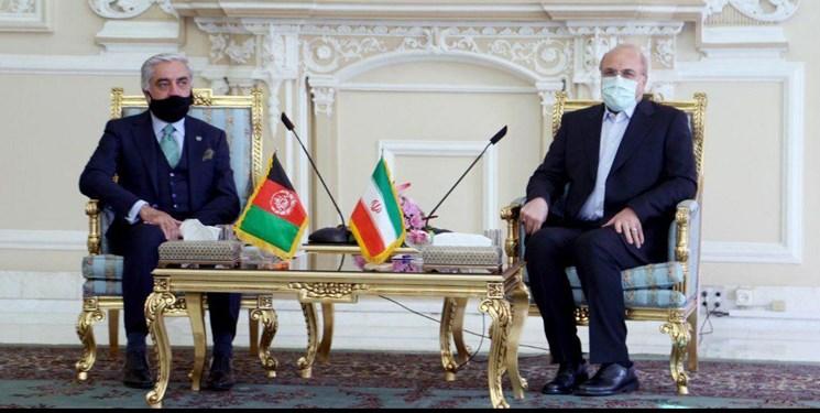 دیدار رئیس شورای عالی مصالحه ملی افغانستان با رئیس مجلس