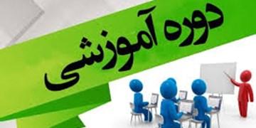 برگزاری 700 دوره آموزشی در جهاد دانشگاهی/ 7 دپارتمان تخصصی در خدمت فراگیران