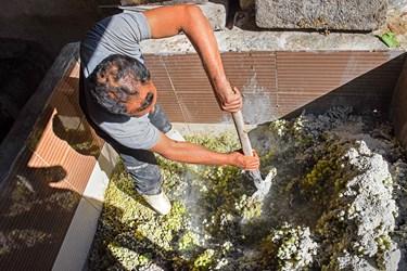 در این مرحله با چکمه داخل حوض سیمانی شده و انگور و خاک سفید را با هم مخلوط کرده و آن را له میکنند تا آب انگور به دست بیاید.