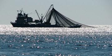 انواع صید ترال و صید میان آبی به مدت دو سال ممنوع خواهد شد+فیلم
