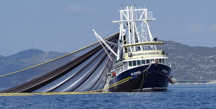 توقف صید ماهیان ترال تا دو سال دیگر ادامه دارد/ احتمالا روشهای جدید جایگزین خواهد شد