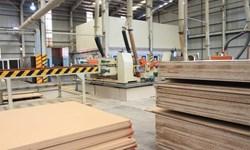 قیمت سرسامآور MDF در زادگاه تولید