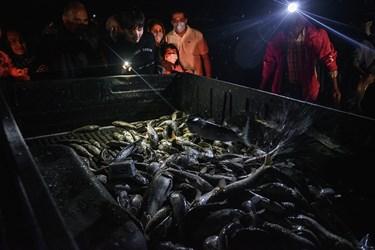 رسمان در تمامی مراحل صید و حتی انتقال ماهی ها  نقش ماثری دارد  و باید به تمامی کار ها نظارت دقیق داشته باشد
